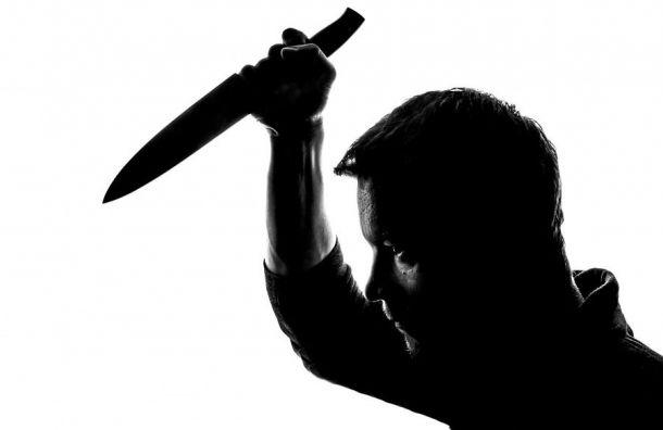 Подросток вКиришах пытался зарезать свою бабушку