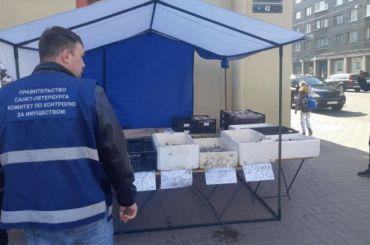 Задва дня вцентре Петербурга убрали 50 незаконных торговых точек