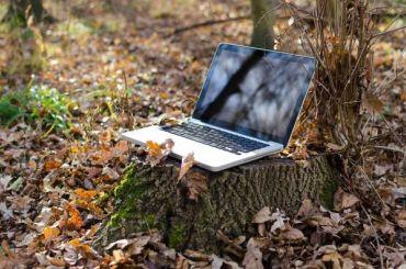 Бесплатный Wi-Fi появится вовсех МФЦ иполиклиниках Петербурга