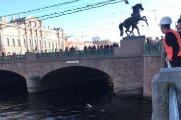 Полиция расследует ДТП со сбитыми пешеходами в центре Петербурга