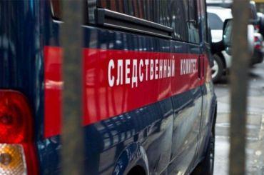 Расчлененное тело наКанонерском побудилоСК завести уголовное дело