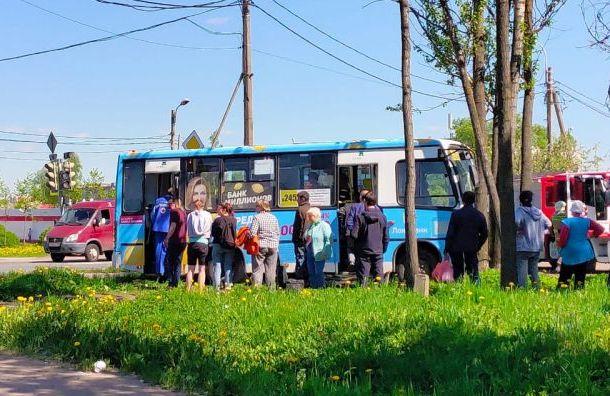 Маршрутка спассажирами врезалась вдерево наКрасносельском шоссе