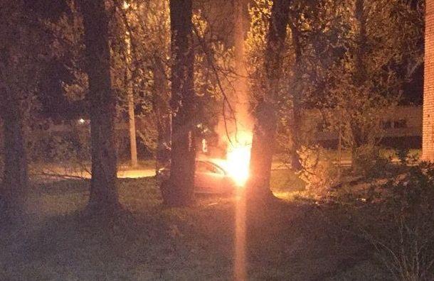 Ночью вГатчине Opel врезался вдерево изагорелся