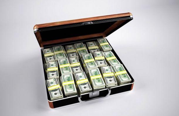 Полиция задержала похитителя портфеля смиллионом рублей