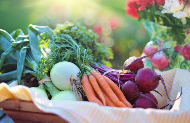 Ginza Project отказалась развивать продуктовую сеть Allfoods