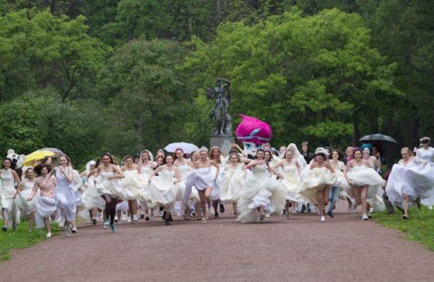 Марафон невест устроили вПетербурге