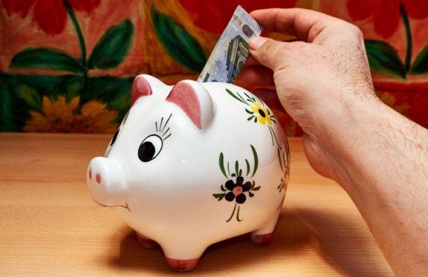Названы три направления по увеличению доходности бюджета Петербурга