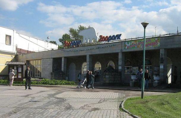 «Ночь музеев» доберется доЛенинградского зоопарка