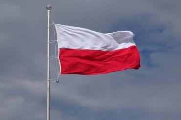 Смольный подтвердил закрытие школы сизучением польского языка