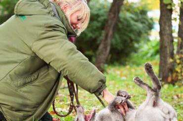Ленинградский зоопарк разрешит погулять спесцом