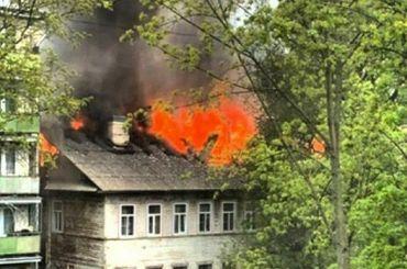 При пожаре вдоме вГатчине сгорели кошки