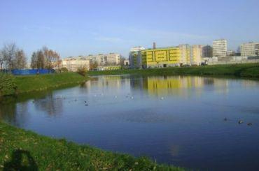 Пулково создаст фонд для очистки реки Новой