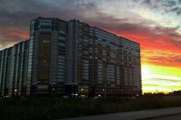 Более двух тысяч семей остались без света вШушарах