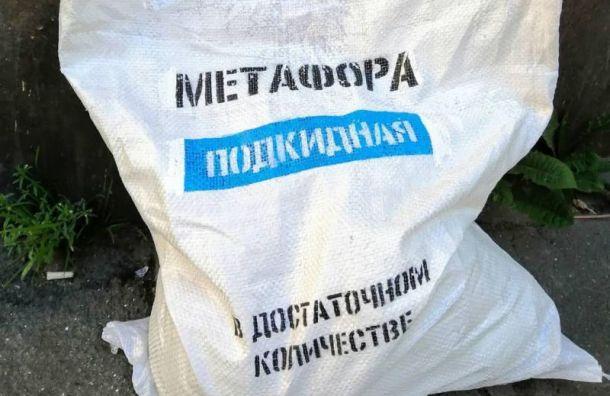 Уличные художники Петербурга поддержали Ивана Голунова