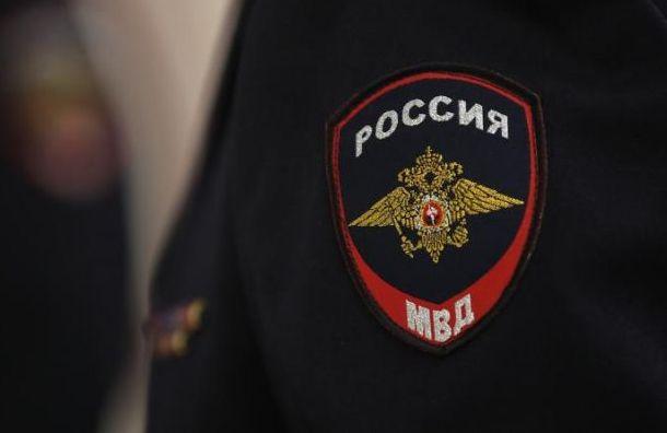 МВД заплатит 50 тысяч рублей зазадержание активиста наНевском