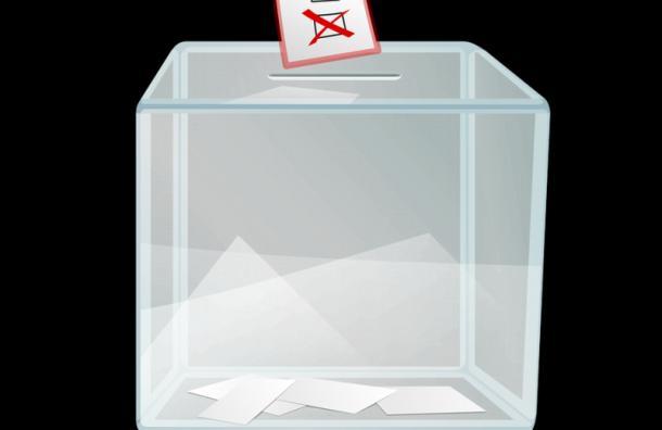 ГИК потратит 15 млн рублей наурны икабинки для голосования