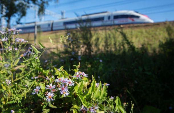 Железнодорожники закончили работы напутях между столицами