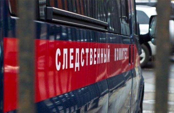 Житель Ленобласти втечение трех месяцев насиловал падчерицу
