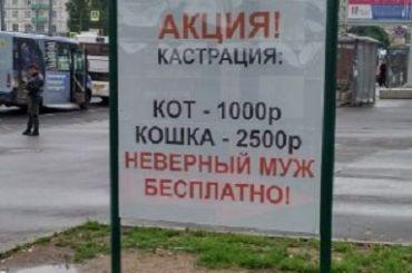 Петербуржцы возмутились рекламой окастрации неверных мужей