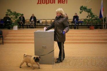 Тайно назначивший дату выборов муниципалитет опубликовал решение