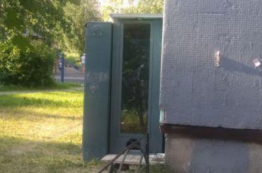 Бульдозер разрушил домики для кошек сживотными внутри