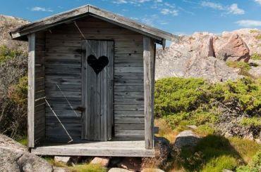 Общественность озабочена туалетами вЛенобласти
