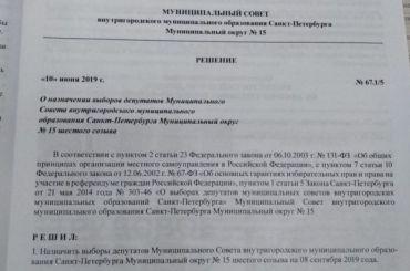 Депутаты ЗакСа просят Памфилову разобраться с«тайными» выборами
