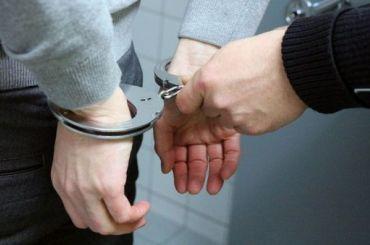 Активиста Мусина задержали за оскорбительный плакат против единороссов