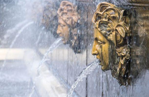 Петербуржцам вчетверг обещают жару до +28 градусов