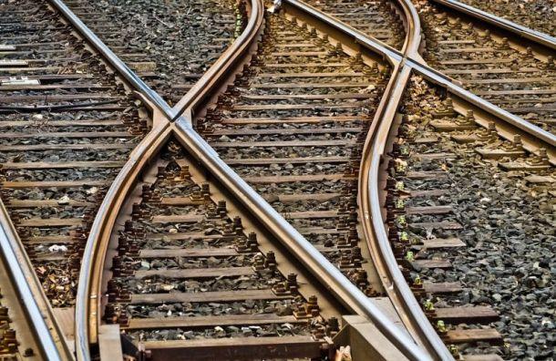 Три трамвайных маршрута изменятся из-за работ наСреднеохтинском проспекте