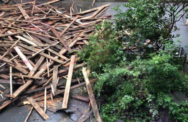 Прохожие жалуются нападающие доски скрыши напроспекте КИМа