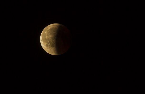 Жители Петербурга иЛенобласти смогут ночью увидеть затмение