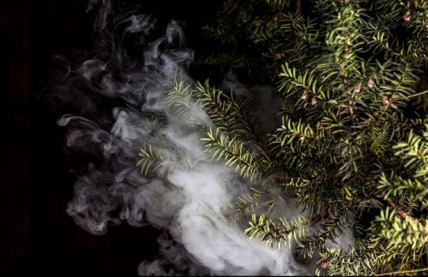Антитабачный закон распространится наэлектронные сигареты