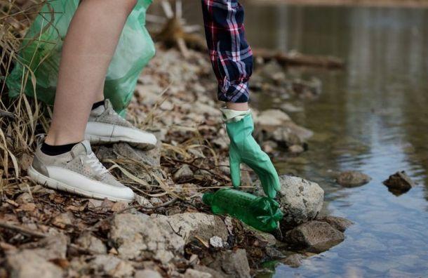 Химики взяли пробы воды изозера Сиркиярви после появления пятна