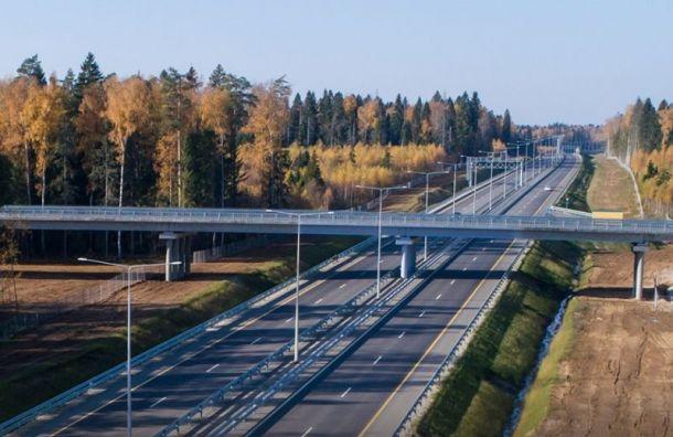 Трассу М11 между столицами предложили назвать «Зашавермой/За шаурмой»