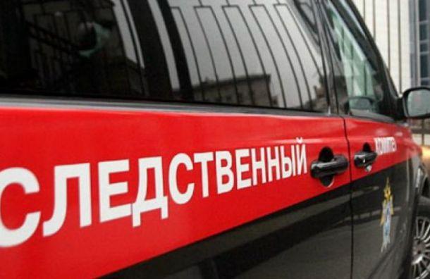 СКвозбудил уголовное дело после убийства активистки Елены Григорьевой