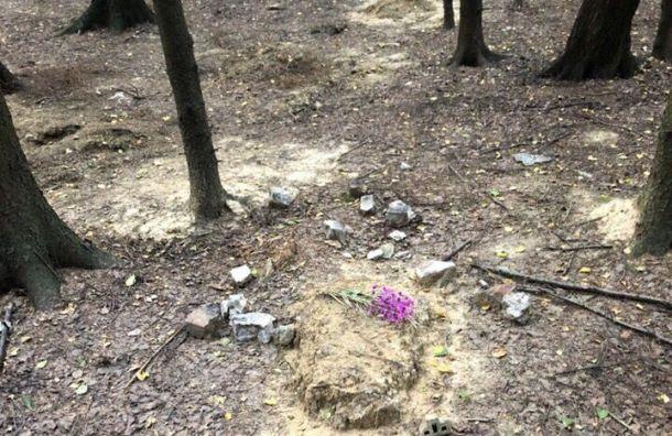 Неизвестные разгромили кладбище домашних животных врайоне Девяткино