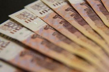 Петербургские бизнесмены похитили 20 млн рублей, выделенных нанауку