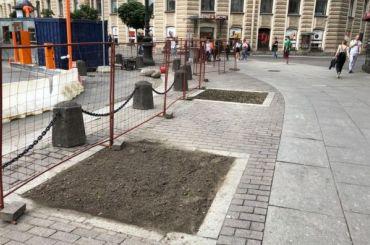 Активисты озеленят площадь Восстания