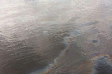 НаНеве заметили нефтяные пятна