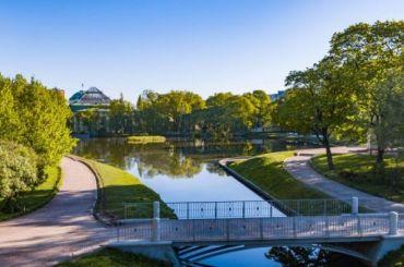 Пять садов Петербурга закрыли из-за плохой погоды