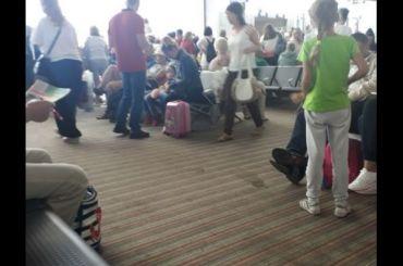 Очевидцы: рейс изКипра вПетербург задержали нанесколько часов