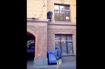 Студенты «ограбили» кота наМалой Садовой