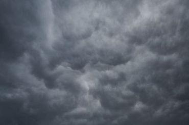Неделя вЛенобласти начнется сдождя исильного ветра