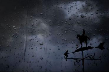 Петербуржцев предупредили обусилении ветра 3июля