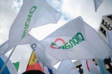 ЦИК отказал врегистрации навыборах четверым кандидатам от«Яблока»
