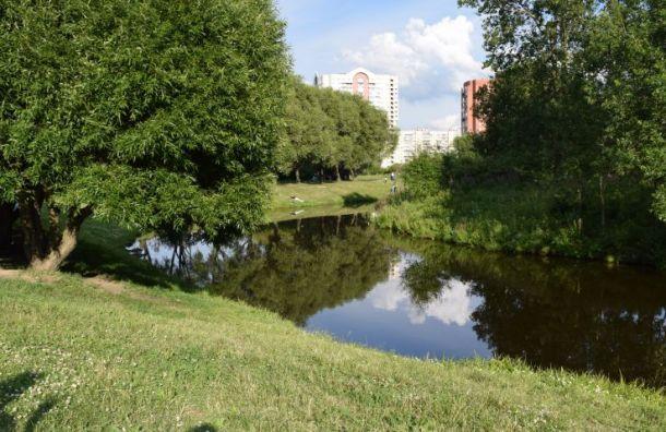 Смольный согласовал митинг взащиту парка «Малиновка»