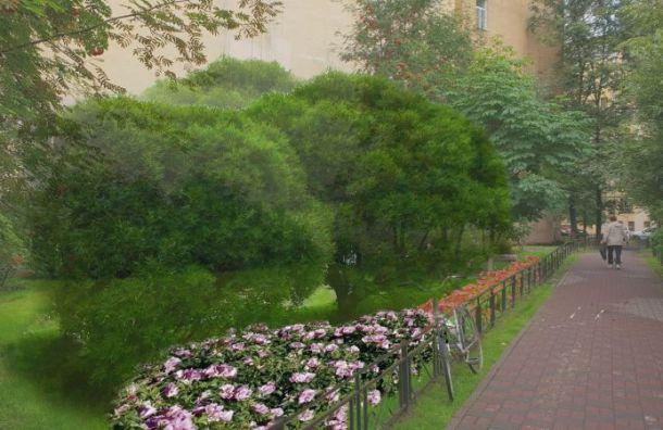 Активисты Васильевского острова зовут соседей сажать деревья