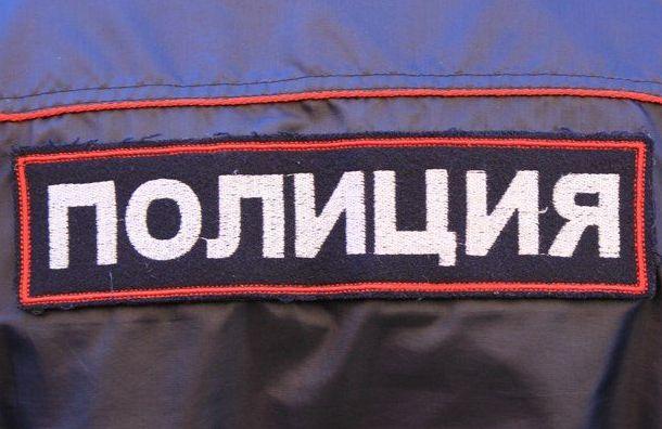 Полицейские оскорбился словами активистки отом, что унего «нет совести»