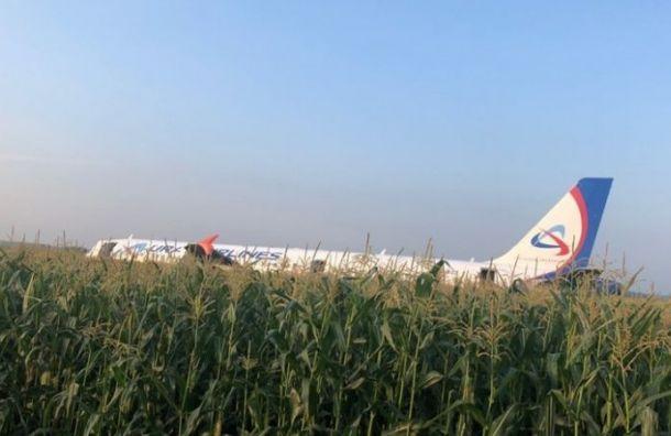 Пассажирам самолета А321 выплатят по100 тысяч рублей